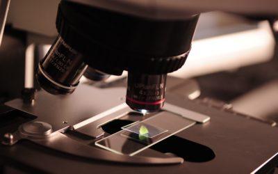 Experiments: Innovation Risk Management